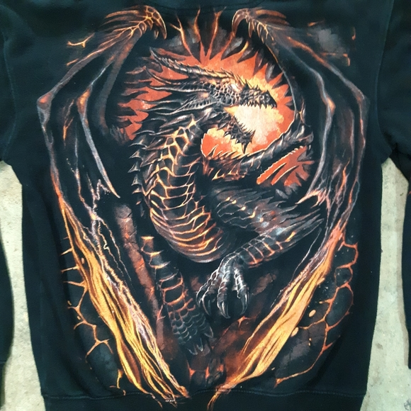 Other - Dragon hoodie